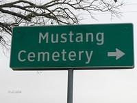 mustangcemetery